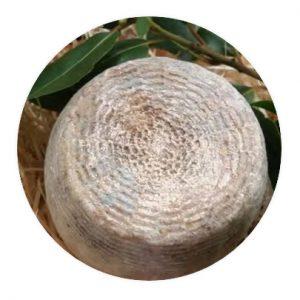Formaggio di capra semistagionato 2-3 mesi 500 gr.