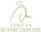 scorciabove-logo135
