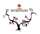 Introvigne Antonio logo