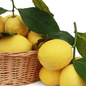 Limoni Buccia Edibile Vendita Online