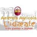 Azienda Agricola L'Ideale
