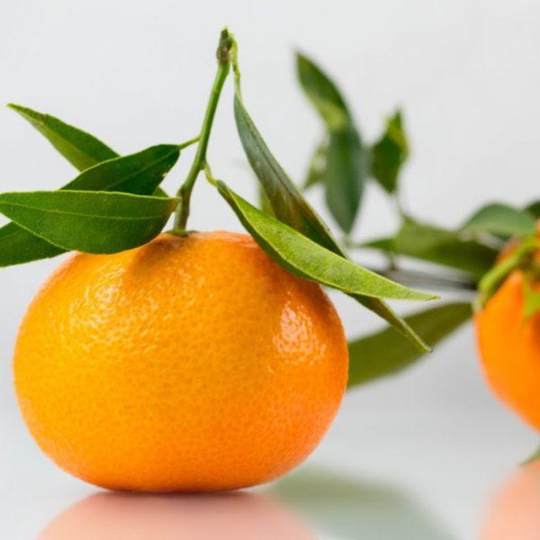 Mandarini Calabresi