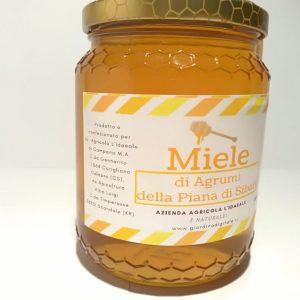 Miele di agrumi vendita online