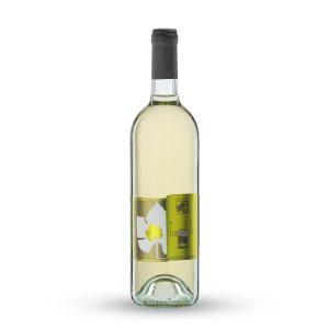 Vino bianco veneto fermo