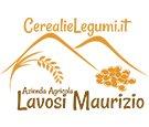 Azienda Agricola Lavosi logo